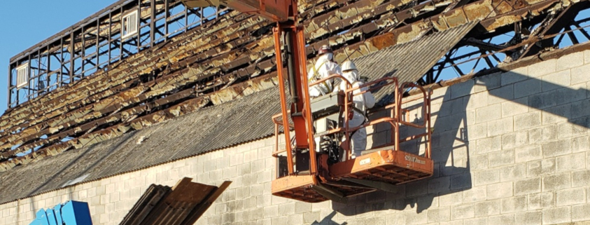Lead Abatement Services
